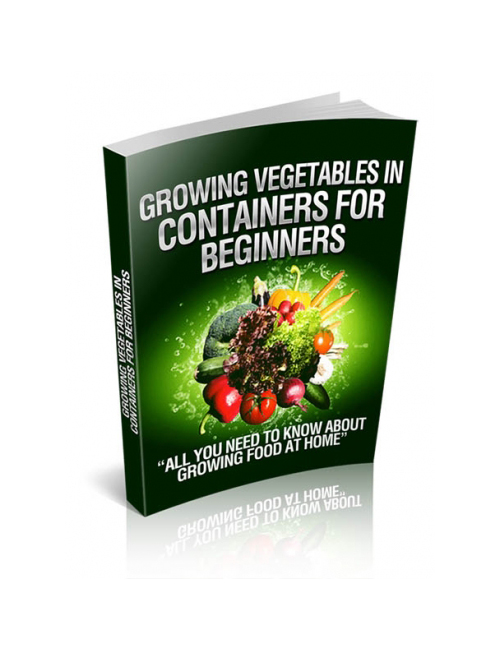 Plr behemoth - Container gardening for beginners practical tips ...