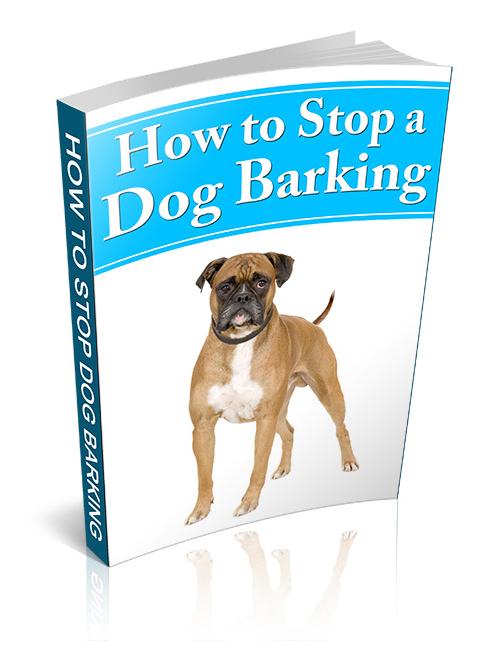 Get Dog To Stop Barking At Neighbors