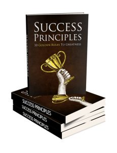 success principles plr ebook with master resell rights shows you how to achieve your potential in your journey to success